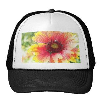 Cheerful Blanket Flower Bloom Mesh Hats