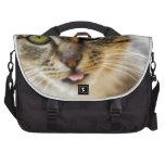 Cheerful cat commuter bag