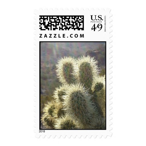 Cheerful Cholla (1)  Postage Stamps