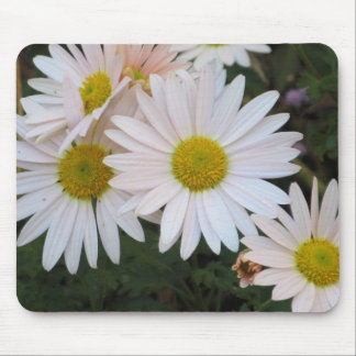 Cheerful Chrysanthemums Mouse Pad