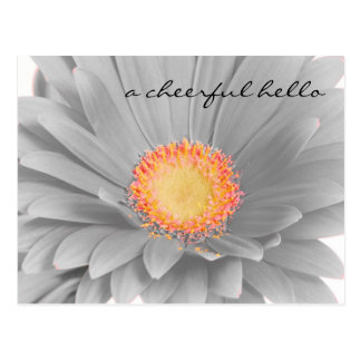 Cheerful Hello Post Card