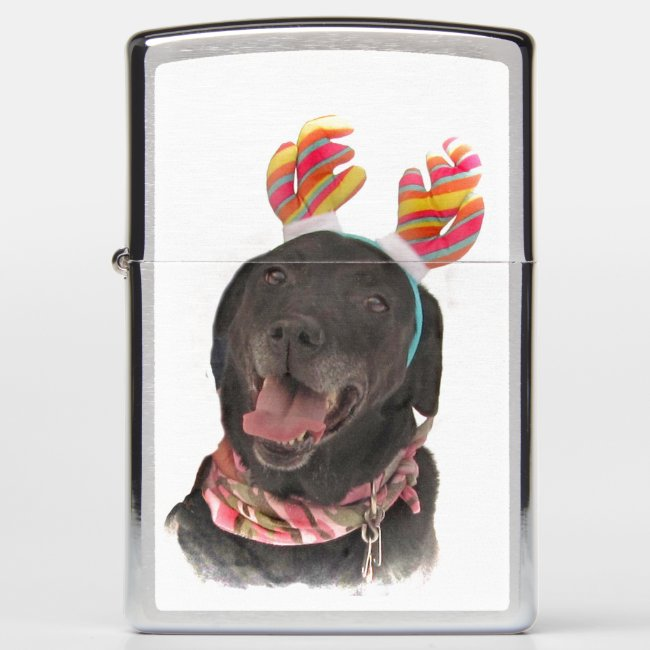 Cheerful Holiday Black Labrador Retriever Dog