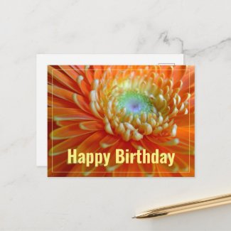 Cheerful Orange Gerber  Happy Birthday Postcard