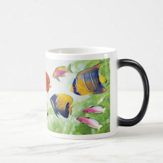 Cheerful seawater fish magic mug