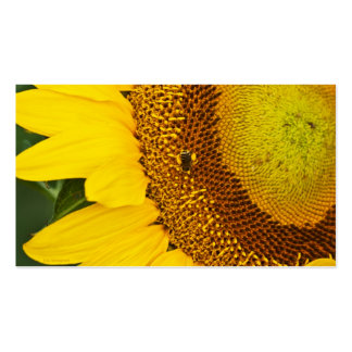 Cheerful Sunflower 2 card Double-Sided Standard Business Cards (Pack Of 100)