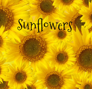 Cheerful Sunflowers Shower Curtain