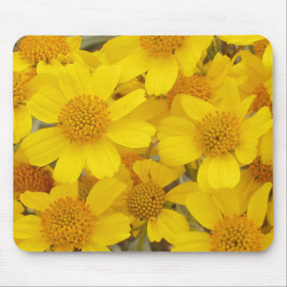 Cheerful Yellow Flowers Mouse Pad