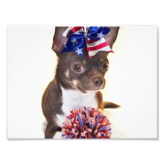 Cheerleader Chihuahua dog Photographic Print