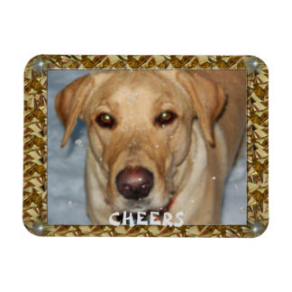 Cheers Golden Lab Bows Magnet