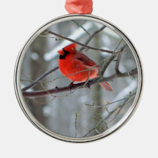 Cheery Cardinal Premium Ornament