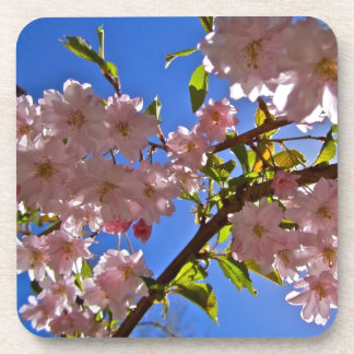 Cheery Cherry Blossoms Drink Coasters