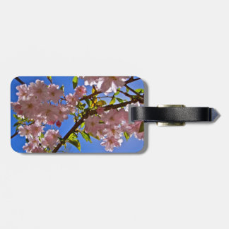 Cheery Cherry Blossoms Luggage Tag