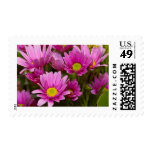 Cheery Daisies Postage Stamp