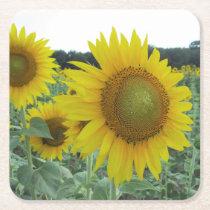 Cheery Sunflower Coasters
