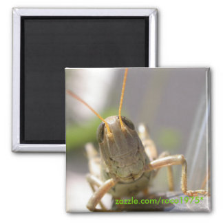 Cheese! 2 Inch Square Magnet