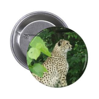 cheeta buttons