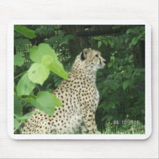 cheeta mouse pads