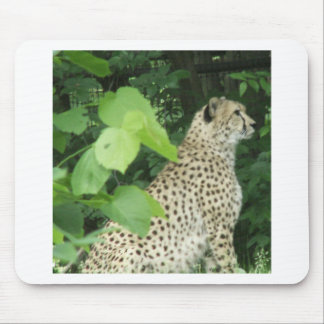 cheetah2 mouse pads