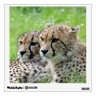 Cheetah 009 wall decal
