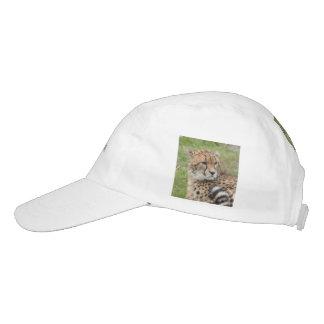 Cheetah 1115 hat