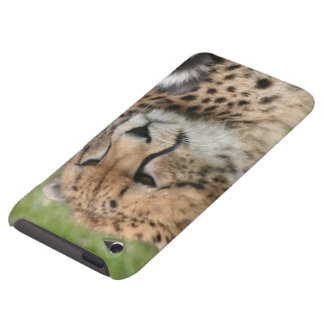 Cheetah 1115 iPod Case-Mate case