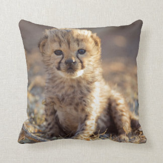 Cheetah 19 days old male cub throw pillow