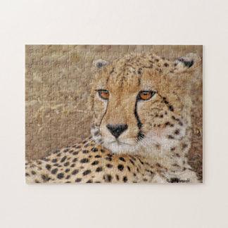 Cheetah 1 Puzzle
