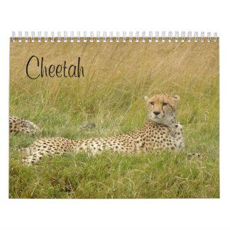 Cheetah 2008 calendar