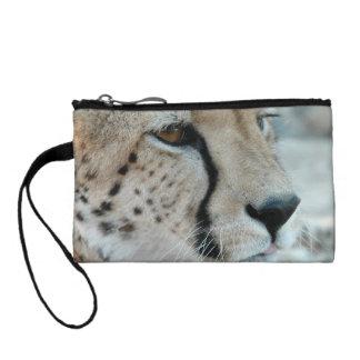 cheetah-23
