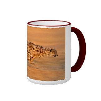 Cheetah 3 mug