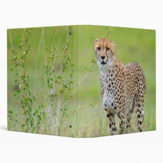 Cheetah 3 Ring Binder