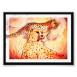 Cheetah 5x7 print
