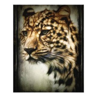 cheetah-79254 WILD ANIMALS STUNNING cheetah huntin Flyer