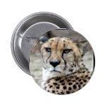 Cheetah-8934e-Bfram Pins