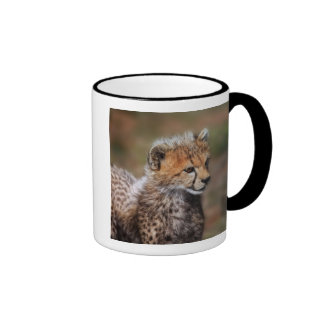 Cheetah (Acinonyx Jubatus) as seen in the Masai Coffee Mug