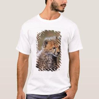 Cheetah (Acinonyx Jubatus) as seen in the Masai T-Shirt