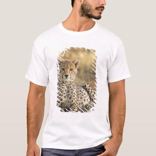 Cheetah, Acinonyx jubatus, cub laying downin T-Shirt