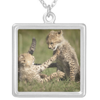 Cheetah, Acinonyx jubatus, cubs playing in the Square Pendant Necklace