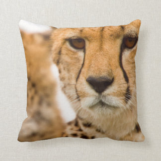 Cheetah (Acinonyx Jubatus) Mother And Cub Throw Pillow