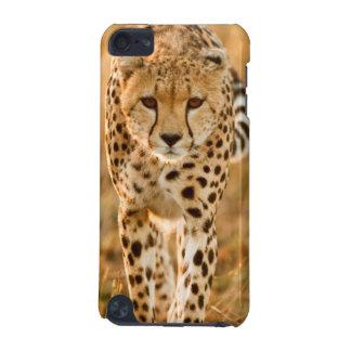 Cheetah (Acinonyx Jubatus) Portrait, Maasai iPod Touch 5G Case