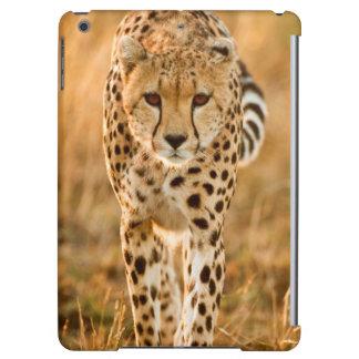 Cheetah (Acinonyx Jubatus) Portrait, Maasai Cover For iPad Air