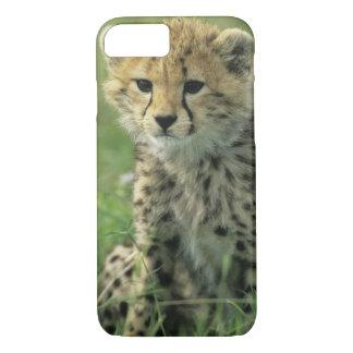 Cheetah, (Acinonyx jubatus), Tanzania, Serengeti iPhone 7 Case