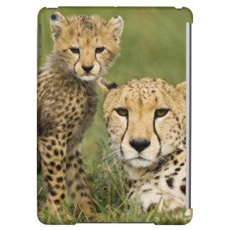 Cheetah, Acinonyx jubatus, with cub in the Case For iPad Air