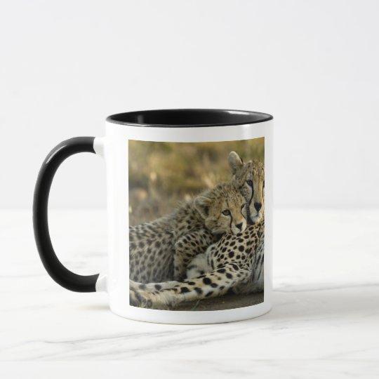 Cheetah, Acinonyx jubatus, with cub in the Masai 2 Mug