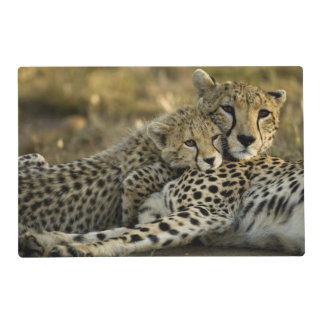 Cheetah, Acinonyx jubatus, with cub in the Masai 2 Placemat