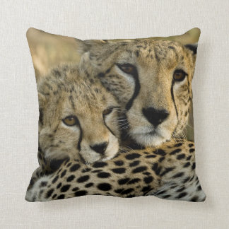 Cheetah, Acinonyx jubatus, with cub in the Masai 2 Throw Pillow