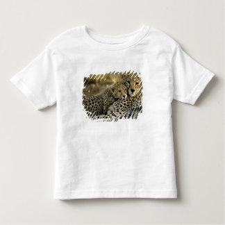 Cheetah, Acinonyx jubatus, with cub in the Masai 2 Toddler T-shirt
