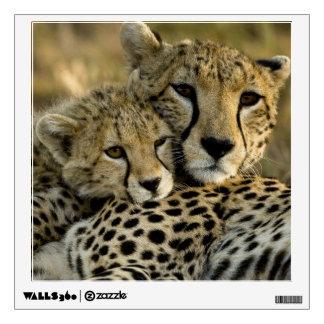 Cheetah, Acinonyx jubatus, with cub in the Masai 2 Wall Sticker