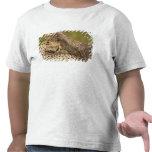 Cheetah, Acinonyx jubatus, with cub in the Masai 3 T-shirts