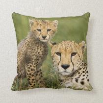 Cheetah, Acinonyx jubatus, with cub in the Throw Pillow